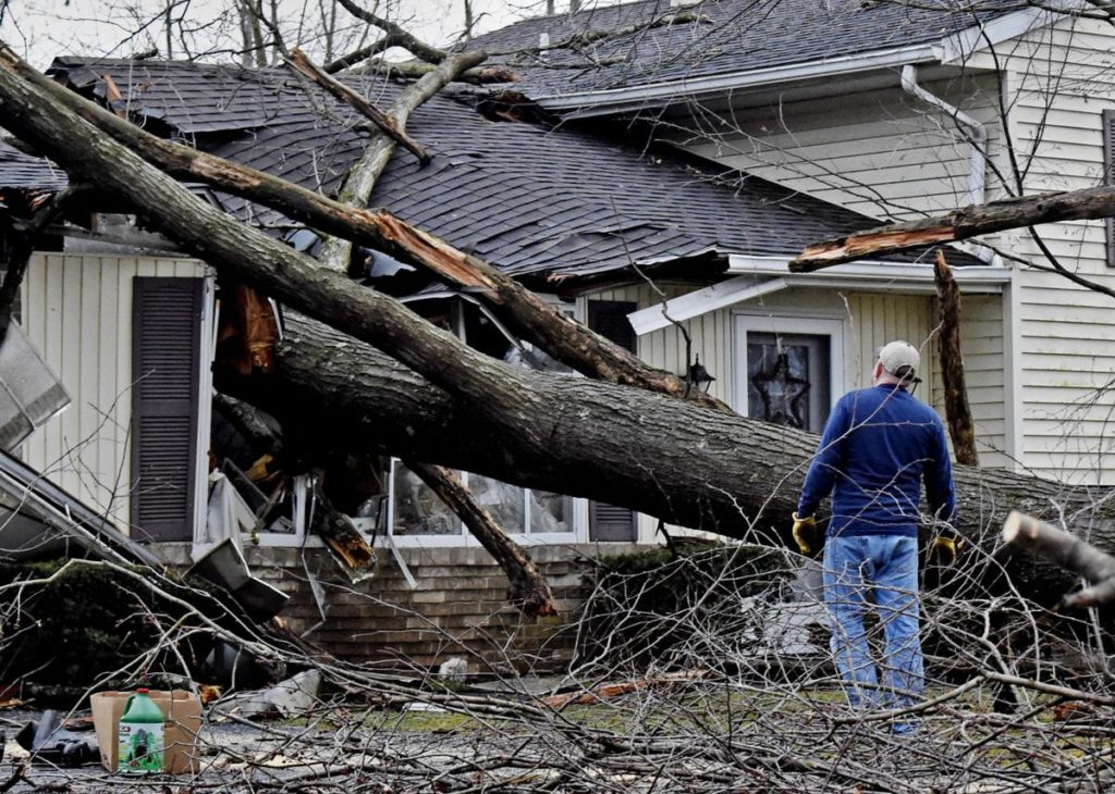 Storm-Damage-Norfolk Tree Trimming and Stump Grinding Services-We Offer Tree Trimming Services, Tree Removal, Tree Pruning, Tree Cutting, Residential and Commercial Tree Trimming Services, Storm Damage, Emergency Tree Removal, Land Clearing, Tree Companies, Tree Care Service, Stump Grinding, and we're the Best Tree Trimming Company Near You Guaranteed!